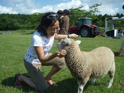 羊 キキ・コンサルティング 石田由紀子 レジャー プライベート マザー牧場