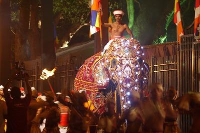スリランカ 海外 保険 ペラヘラ祭り